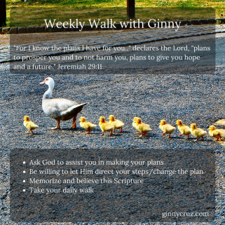 weeklywalk34